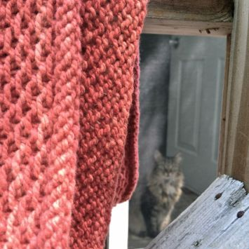 Watching me take knitting photos