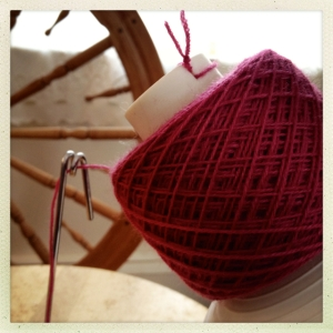 cochineal 1